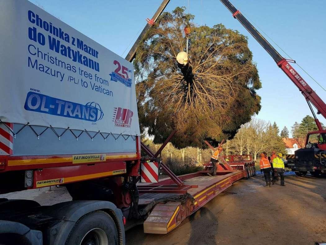 Leasing Weihnachtsbaum.Schwertransport Weihnachtsbaum Für Papst Franziskus International